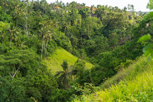 Green Tropical Hills With Red Roofs Stock Photo