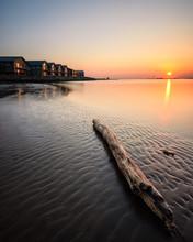 Driftwood On Sandy Beach At Sunset. Gothenburg, Sweden,.