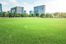 Shenzhen, China, Parks And Sky...