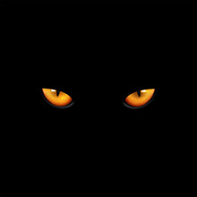 Eyes Cat On Black Background, ...