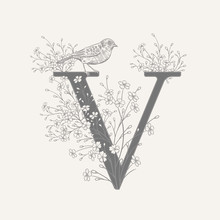 Decoration With Letter V, Decorative Flowers And Bird.