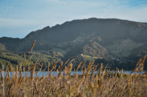 view of mountains with natural light in Neusa #326670114