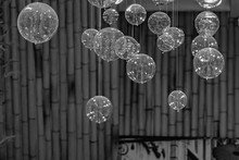 Vintage Background. Black And White Photo Of Defocused Transparent Bubbles Floating On Blurry Background Of Bamboo Branches. Glass Bulbs On String Fishing Lines. Abstract Bubbled Backdrop.