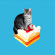 canvas print picture Contemporary funny art collage.  Fat cat surfing on cake