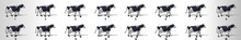 Cow Walk Cycle Animation Frame...