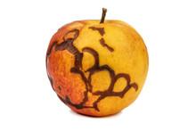 Ripe Rotten Apple On White