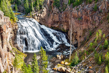 Gibbon Falls In Yellowstone Na...