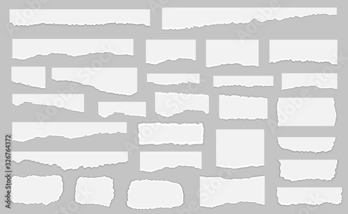 Cuadros en Lienzo Set of pieces of white torn paper, isolated on grey background