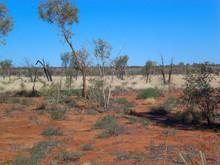 Outback Uluru-Kata Tjuta National Park Northern Territory Australia
