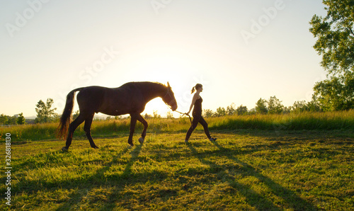 Fototapeta CLOSE UP: Young woman walking with her stallion horse on meadow field at sunset obraz