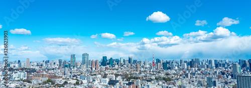 Fototapeta 東京風景 obraz