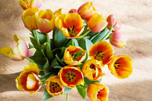 Yellow Tulips Are Spring Flowe...