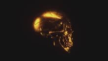 Scary Grunge Gold Human Skull ...