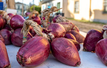 Red Onions From Tropea (cipoll...