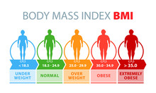 Body Mass Index. Man Silhouettes With Different Obesity Degrees. Weight Loss. Vector Illustration.
