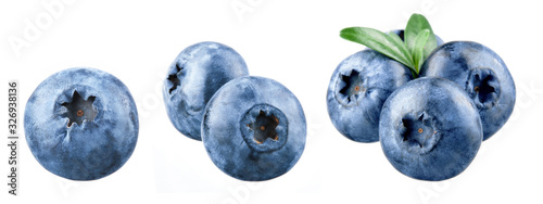 Fototapeta Blueberry isolated. Blueberry on white. Bilberry. Bilberry on white background. obraz