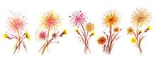 Summer Flower Dandelion. Pencil Illustration.