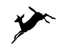 Silhouette Of Deer Running. Vector Image