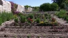 Notre Dame De Sion Vegetable Garden