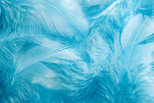 Abstract Soft Blue Feather Bac...
