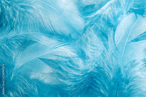 Abstract soft blue feather background Fototapet