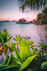 La Digue Island, Seychelles. Beautiful tropical sandy beach with exotic plants in evening sunset lilac light. Vacation holiday concept