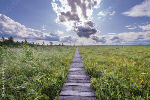 Wooden tourist walkway called Dluga Luka on a Lawki swamps in Biebrza National P Tablou Canvas