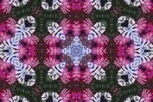 Blurred Symmetry Monstera Leav...