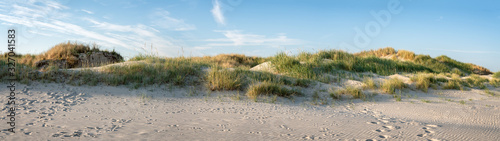 Slika na platnu Sandy dunes as panorama background