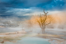 Moody, Foggy Hot Spring Pool, Mammoth Hot Springs, Yellowstone National Park