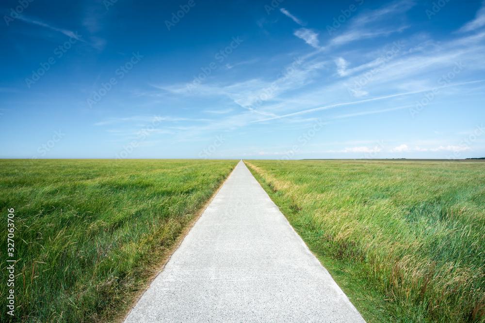 Fototapeta Long straight road along grassland