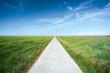 Leinwandbild Motiv Long straight road along grassland