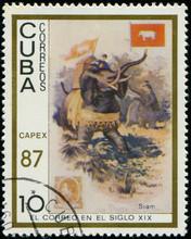 CUBA - CIRCA 1987: Postage Sta...