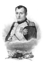 Portrait Of Napoleon In The Ol...