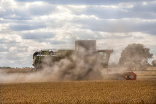 Combine Harvesting Wheat In A ...