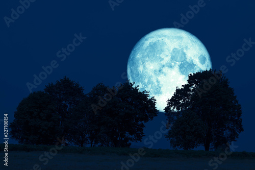 super full harvest moon on night sky back tree in the field Canvas Print