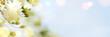 Leinwanddruck Bild - Spring border, season background