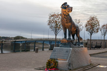 MONTROSE, SCOTLAND - 2015 OCTOBER 23. The Bamse Statue Is A Memorial To The Dog Bamse Which Became A Heroic Mascot To The Free Norwegian Forces During The Second World War.