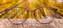 View Through Eyeglasses To Nat...
