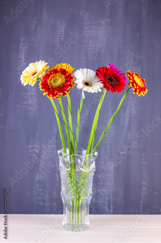 Bouquet of gerberas in vase on an isolated dark background Wallpaper Mural