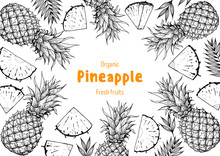 Pineappple Hand Drawn Package ...