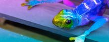 Neon Colored Vibrant Metallic ...
