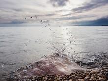 Close-up Of Stone And Water Drops At Lake Shore
