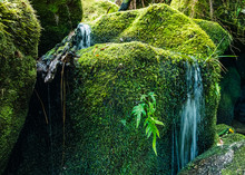 Mossy Rocks With Water Flowing