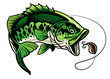 bass fish catcing the fishing lure