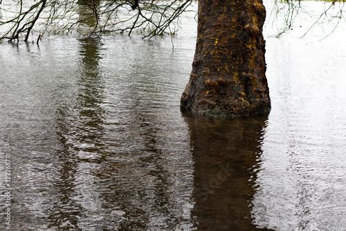 Flooded river after heavy storm rainfall flooding adjacent farmland Wallpaper Mural
