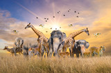 Fototapeta Sawanna - Large group of african safari animals. Wildlife conservation concept