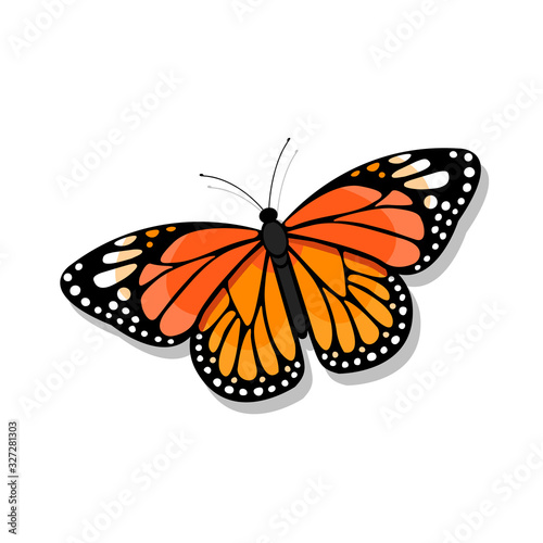 Monarch butterfly illustration on white background - vector Canvas Print