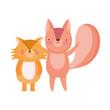 cute fox and squirrel animals cartoon character