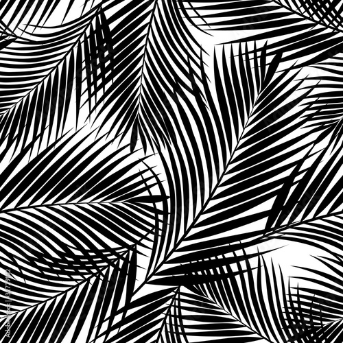 black-and-white-tropical-palm-leaves-texture